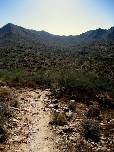 The Sunrise Trail. Scottsdale, AZ