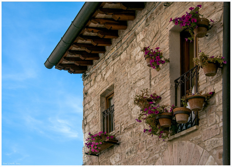 Flowering potted petunias decorate the wall of a villa.