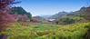 Doi Ang Khang farming