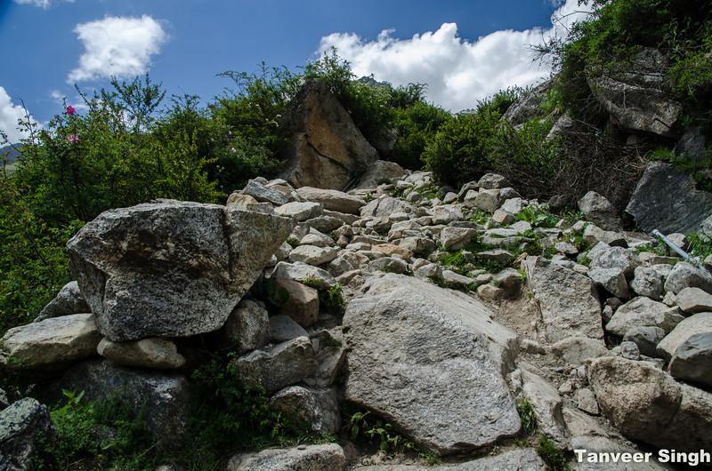 "Taken at Latitude/Longitude:31.353804/78.434994. 1.44 km South Mastarang Himachal Pradesh India <a href=""http://www.geonames.org/maps/google_31.353804_78.434994.html""> (Map link)</a>"