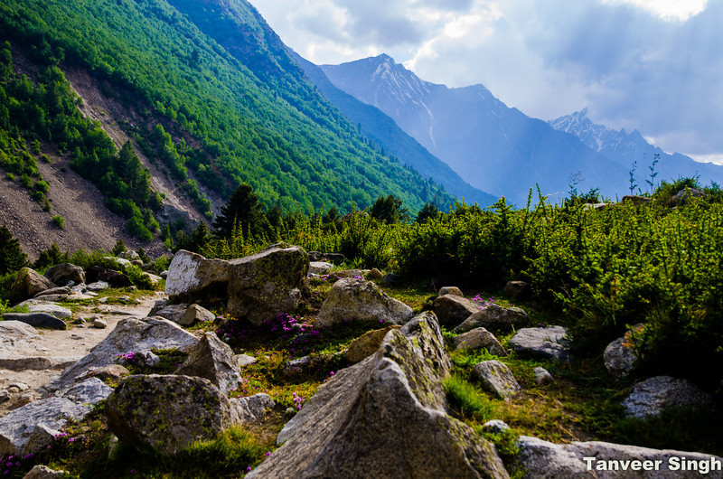 "Taken at Latitude/Longitude:31.347132/78.460026. 3.34 km South-East Mastarang Himachal Pradesh India <a href=""http://www.geonames.org/maps/google_31.347132_78.460026.html""> (Map link)</a>"