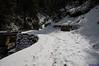 "Taken at Latitude/Longitude:30.481960/79.187635. 10.19 km East Barmoāri Uttarakhand India <a href=""http://www.geonames.org/maps/google_30.481960_79.187635.html""> (Map link)</a>"