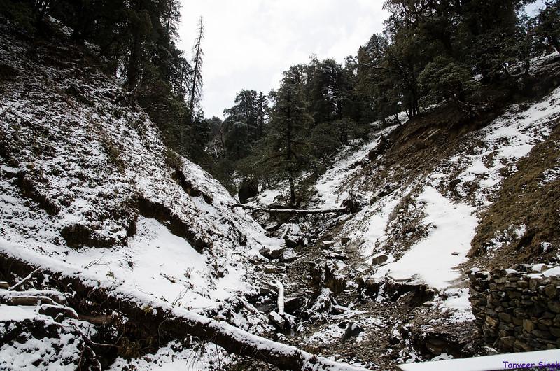 "Taken at Latitude/Longitude:30.481598/79.186432. 10.09 km East Barmoāri Uttarakhand India <a href=""http://www.geonames.org/maps/google_30.481598_79.186432.html""> (Map link)</a>"