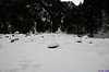 "Taken at Latitude/Longitude:31.033335/78.755543. 2.12 km East Harsil Uttarakhand India <a href=""http://www.geonames.org/maps/google_31.033335_78.755543.html""> (Map link)</a>"