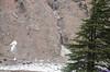 "Taken at Latitude/Longitude:31.036217/78.728282. 0.58 km North-West Harsil Uttarakhand India <a href=""http://www.geonames.org/maps/google_31.036217_78.728282.html""> (Map link)</a>"