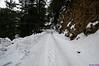 "Taken at Latitude/Longitude:31.037207/78.738030. 0.62 km North-East Harsil Uttarakhand India <a href=""http://www.geonames.org/maps/google_31.037207_78.738030.html""> (Map link)</a>"