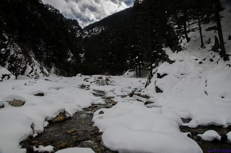 "Taken at Latitude/Longitude:31.039552/78.794572. 5.88 km East Harsil Uttarakhand India <a href=""http://www.geonames.org/maps/google_31.039552_78.794572.html""> (Map link)</a>"
