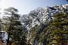 "Taken at Latitude/Longitude:31.022832/78.870452. 1.41 km North-West Bhaironghāti Uttarakhand India <a href=""http://www.geonames.org/maps/google_31.022832_78.870452.html""> (Map link)</a>"