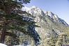 "Taken at Latitude/Longitude:31.038808/78.854110. 3.72 km North-West Bhaironghāti Uttarakhand India <a href=""http://www.geonames.org/maps/google_31.038808_78.854110.html""> (Map link)</a>"