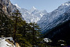 """Taken at Latitude/Longitude:31.001573/78.900048. 2.31 km South-East Bhaironghāti Uttarakhand India <a href=""""http://www.geonames.org/maps/google_31.001573_78.900048.html""""> (Map link)</a>"""