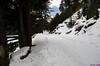 "Taken at Latitude/Longitude:31.039833/78.795717. 5.99 km East Harsil Uttarakhand India <a href=""http://www.geonames.org/maps/google_31.039833_78.795717.html""> (Map link)</a>"
