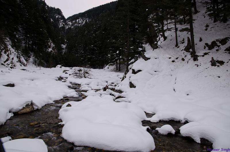 "Taken at Latitude/Longitude:31.039492/78.794568. 5.87 km East Harsil Uttarakhand India <a href=""http://www.geonames.org/maps/google_31.039492_78.794568.html""> (Map link)</a>"