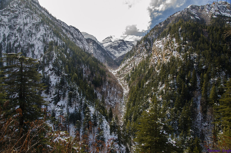 """Taken at Latitude/Longitude:31.003260/78.895020. 1.86 km South-East Bhaironghāti Uttarakhand India <a href=""""http://www.geonames.org/maps/google_31.003260_78.895020.html""""> (Map link)</a>"""