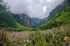 "Taken at Latitude/Longitude:30.722023/79.589535. 4.42 km North Lokpāl Uttarakhand India <a href=""http://www.geonames.org/maps/google_30.722023_79.589535.html""> (Map link)</a>"