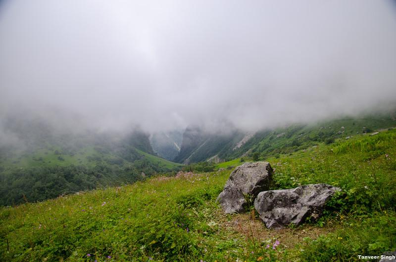 "Taken at Latitude/Longitude:30.725814/79.591888. 4.79 km North Lokpāl Uttarakhand India <a href=""http://www.geonames.org/maps/google_30.725814_79.591888.html""> (Map link)</a>"