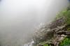 "Taken at Latitude/Longitude:30.700174/79.612346. 2.21 km North-East Lokpāl Uttarakhand India <a href=""http://www.geonames.org/maps/google_30.700174_79.612346.html""> (Map link)</a>"