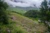 "Taken at Latitude/Longitude:30.718419/79.591527. 3.98 km North Lokpāl Uttarakhand India <a href=""http://www.geonames.org/maps/google_30.718419_79.591527.html""> (Map link)</a>"