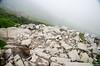 "Taken at Latitude/Longitude:30.699535/79.612654. 2.17 km North-East Lokpāl Uttarakhand India <a href=""http://www.geonames.org/maps/google_30.699535_79.612654.html""> (Map link)</a>"
