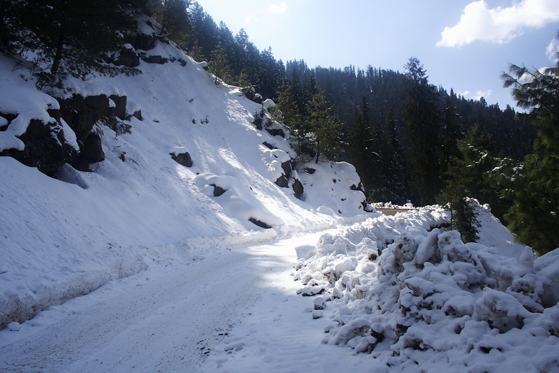 "Taken at Latitude/Longitude:31.254653/77.483507. 3.45 km East N?rkanda Him?chal Pradesh India <a href=""http://www.geonames.org/maps/google_31.254653_77.483507.html""> (Map link)</a>"