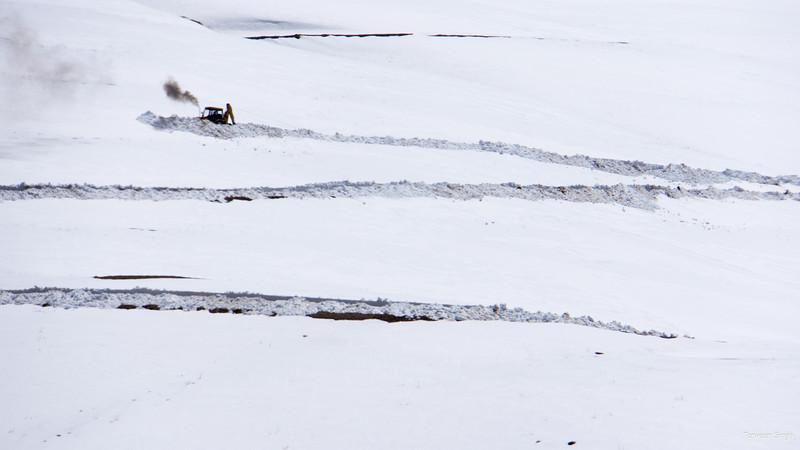 "Taken at Latitude/Longitude:32.327922/78.007804. 1.03 km South-West Kibar Himachal Pradesh India <a href=""http://www.geonames.org/maps/google_32.327922_78.007804.html""> (Map link)</a>"