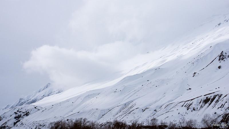 "Taken at Latitude/Longitude:32.170067/78.111894. 2.23 km North-West Lara Himachal Pradesh India <a href=""http://www.geonames.org/maps/google_32.170067_78.111894.html""> (Map link)</a>"
