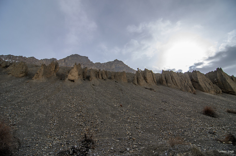 "Taken at Latitude/Longitude:32.174154/78.107512. 2.83 km North-West Lara Himachal Pradesh India <a href=""http://www.geonames.org/maps/google_32.174154_78.107512.html""> (Map link)</a>"