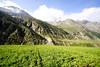 "Taken at Latitude/Longitude:32.430485/77.207945. 1.74 km North-West Khoksar State of Him?chal Pradesh India <a href=""http://www.geonames.org/maps/google_32.430485_77.207945.html""> (Map link)</a>"