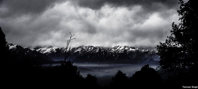 "Taken at Latitude/Longitude:30.063198/80.211548. 4.39 km South-West Munsiyari Uttar Pradesh India <a href=""http://www.geonames.org/maps/google_30.063198_80.211548.html""> (Map link)</a>"