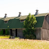 A former dairy barn, this structure has a full-length shed addition...the two small dormers as well as the three air ventilators helped to provide air circulation for the livestock.