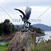 A bird statue along the road from Hobart, Tasmania, Australia.