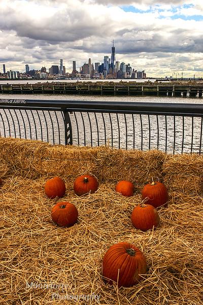 Pumpkins on Pier in Hoboken