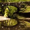 Bridge reflection_0183