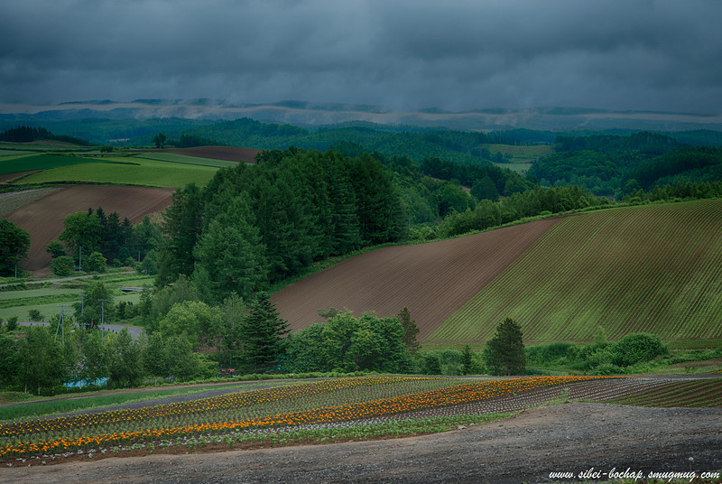 more of the furano countryside