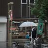 Asahikawa Kaimono Koen - rainy day