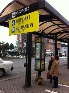 去到旭川車站要再轉巴士去旭山動物園