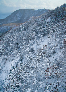 Up Mt Hakodate