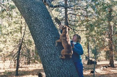 12/22/89 Bill & Chuck. Holcomb Valley campground, San Bernardino National Forest, San Bernardino County, CA