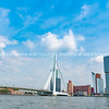 Erasmus Cable Stay Bridge Rotterdam