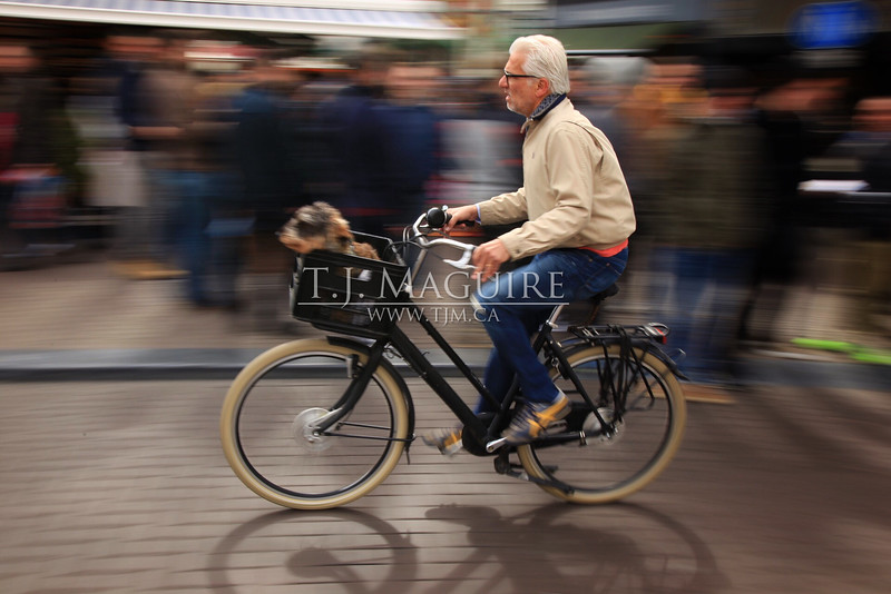 Urban Commuter, Amsterdam, Holland