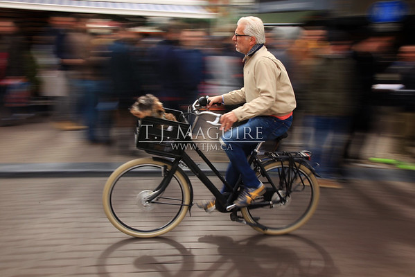 Urban Commuter, Amsterdam, Holland