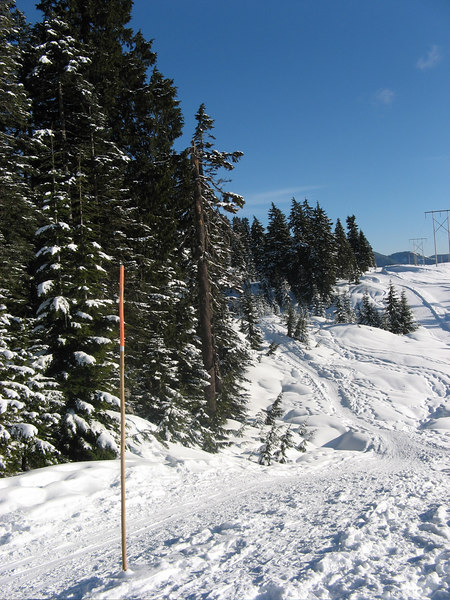 Powerline Trail 1