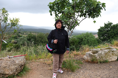 Sister Susanna is standing infront of a fig tree.
