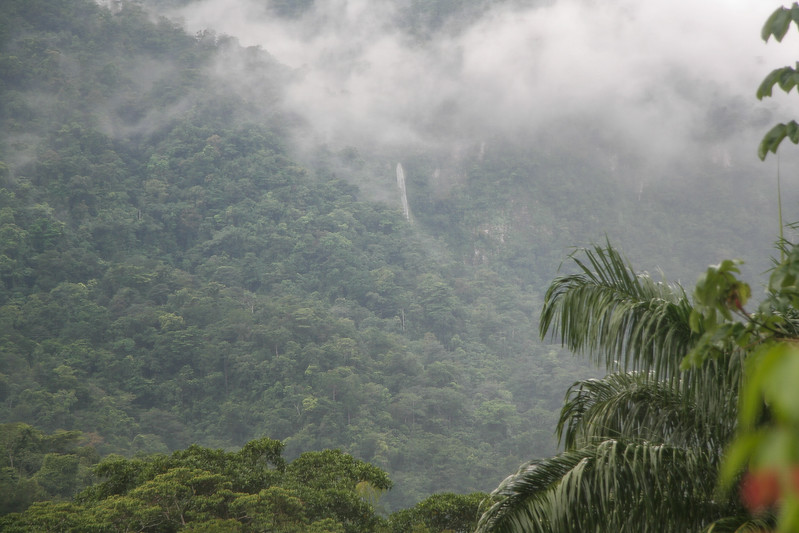 View from the window of my room - notice one of the many waterfalls up in the hills.