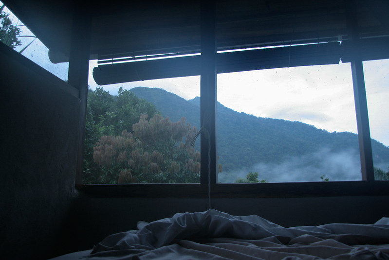 I woke up to this view from my bed. We were in the cloud forest so there were fluffly clouds around for most of the day.