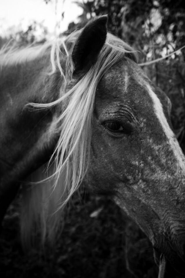 LPI_3560_Lesha Patterson Photography