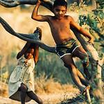 Children in Puente Grande, Yoro, Honduras, 1987. (Photo by Rich Chapman)