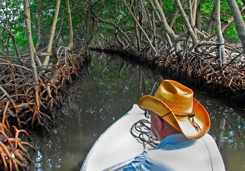 MangroveTunnelRoatanHonduras-03