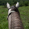 on a horseback ride at Finca el Cisne, Copan, Honduras
