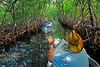 MangroveTunnelRoatanHonduras-05
