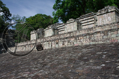 The ball court at Copan. There is some debate as to who would be sacrificed after a game. Some believe that the loser would sacrifice their life to the Gods for their failure. Others believe that only the winner would be allowed to offer himself in sacrifice. Personally I don't really know why a God would want a loser so I tend to believe that the winner would make a more worthwhile sacrifice. But this is only my opinion. I welcome yours. One thing is known for sure, someone was sacrificed! Ruinas de Copan, Honduras.
